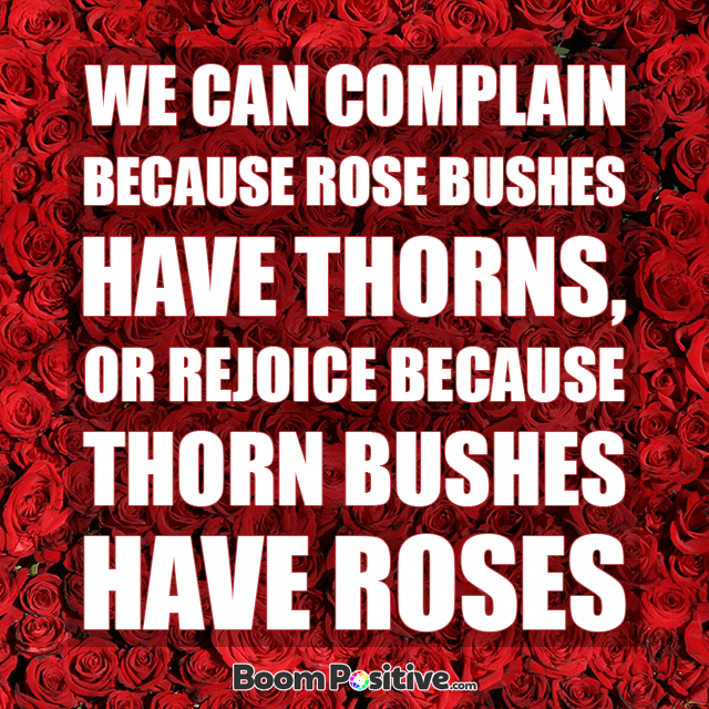 rose quote by abraham lincoln