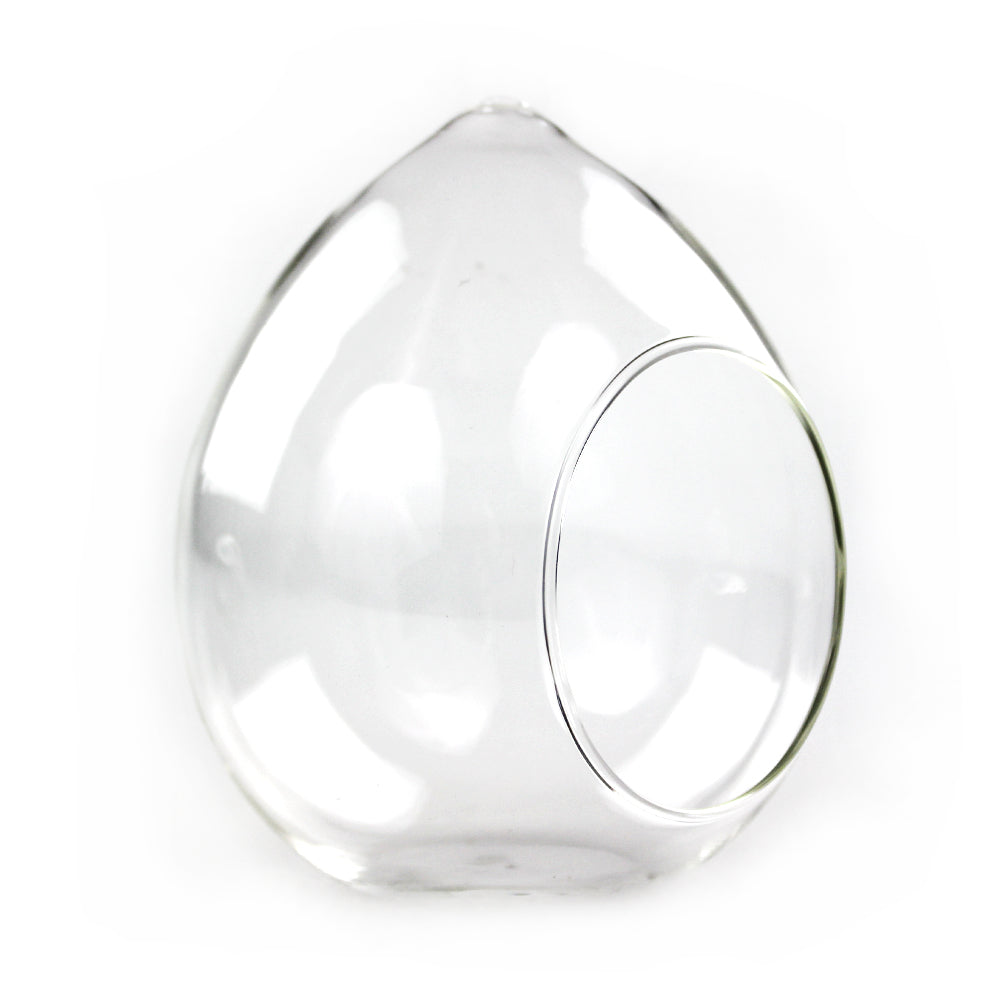 Tear-drop shaped glass terrarium