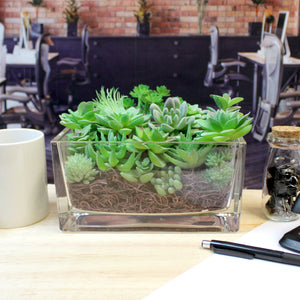 "Faux Succulent Arrangement Kit w Rectangular Glass Vase - ""Cool Meadow"""