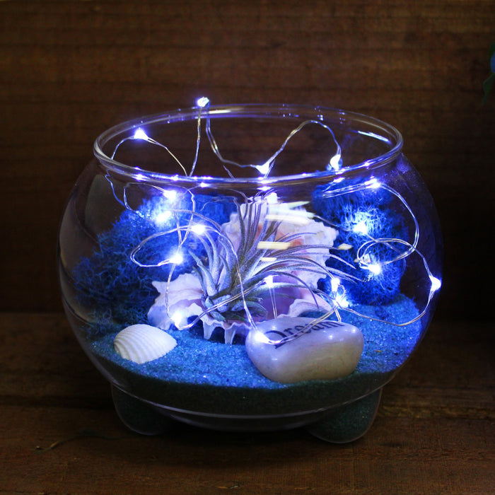 Battery Operated 20 LED String Lights