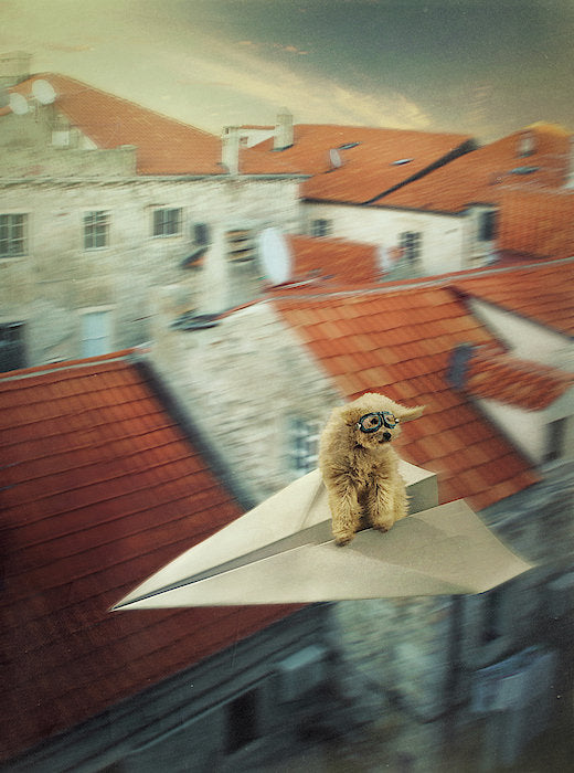 Dog in goggles flying on a paper plane