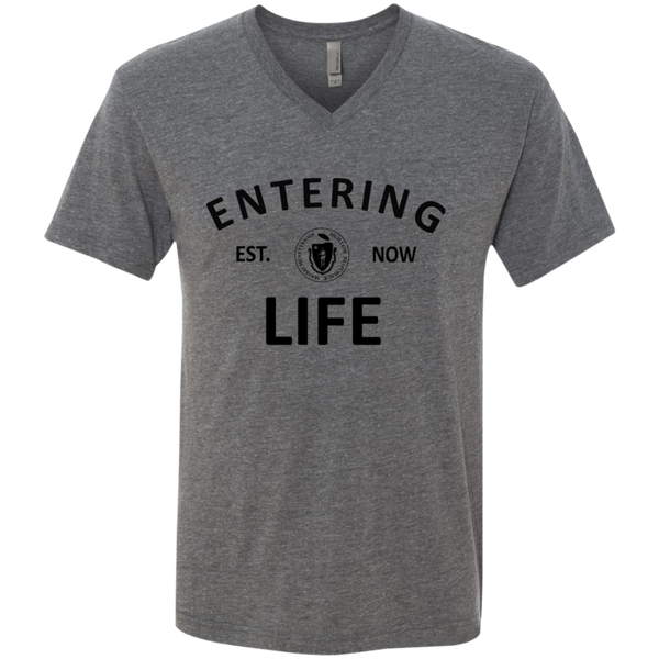 Entering LiFE Men's Triblend V-Neck T-Shirt