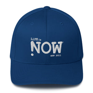 LiFE is NOW Flexfit Elastic Back Structured Twill Cap