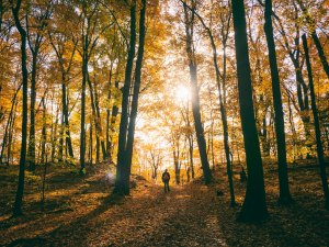 Four Reasons You Should Spend More Time Outdoors