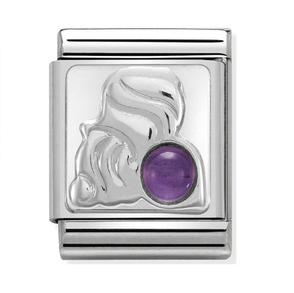 Nomination Charms Zodiac Aquarius with Amethyst