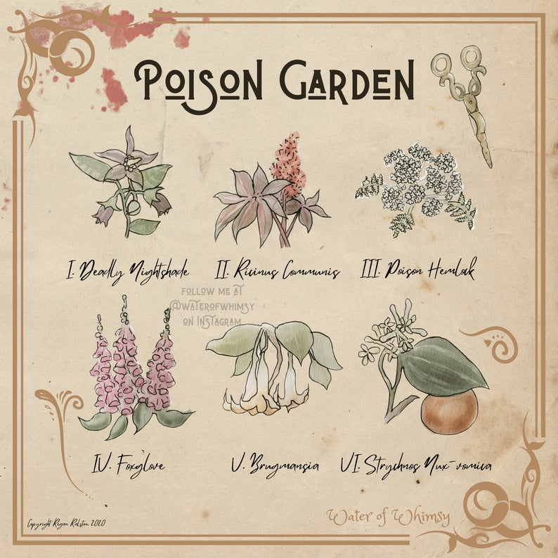 Poison Garden Water of Whimsey Framed Art Print