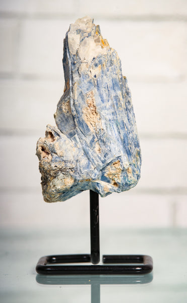 Kyanite Freeform mounted 8 inch specimen