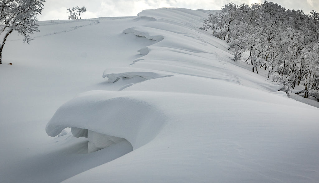 Winter snow in japan