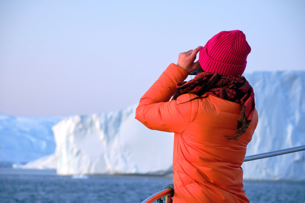 Midnight sun Whale watching tour amongst the icebergs