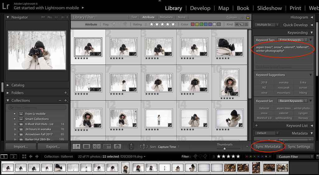Adding keywords to lightroom