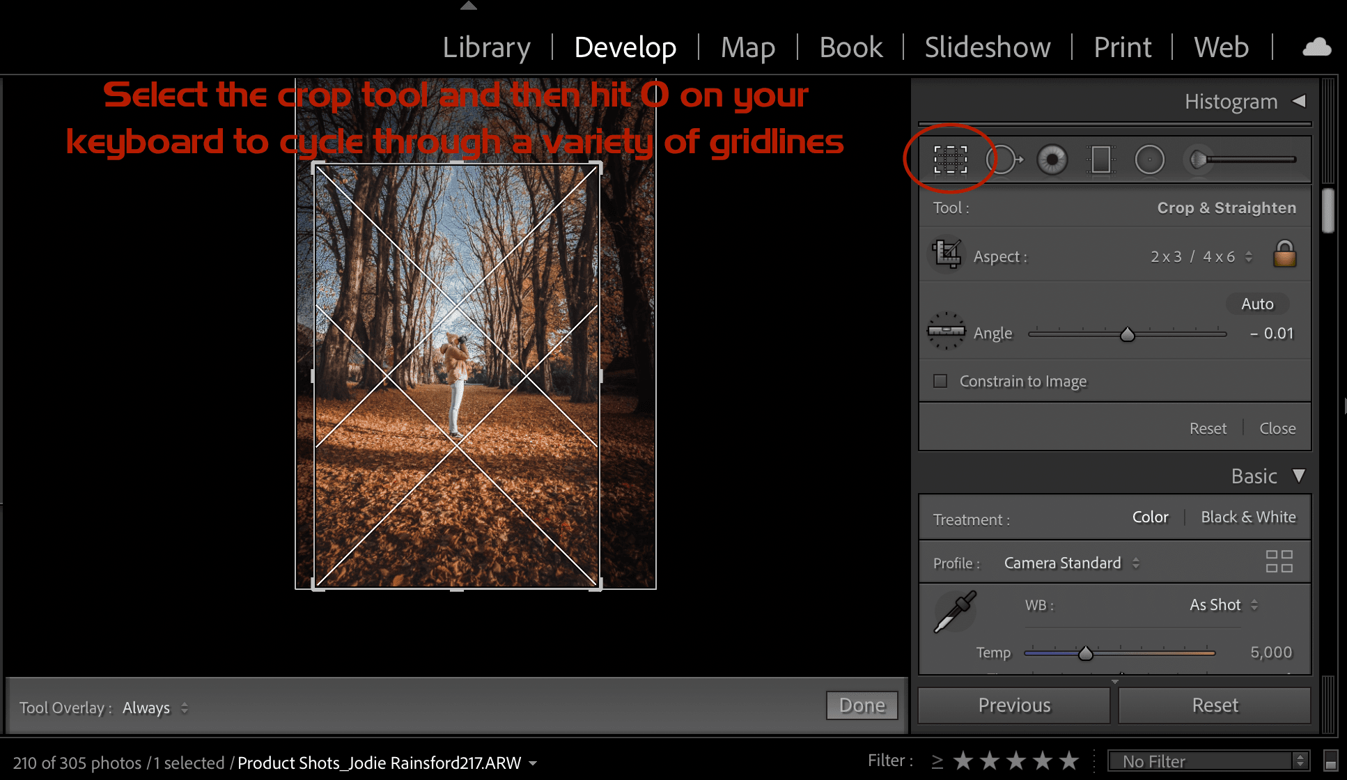 grid overlays for better composition in lightroom