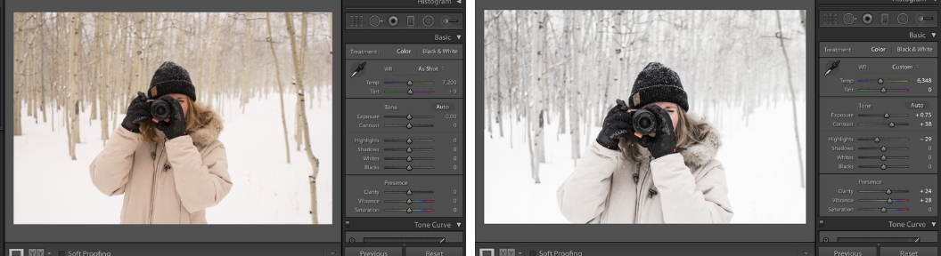 Temperature and tone sliders in lightroom