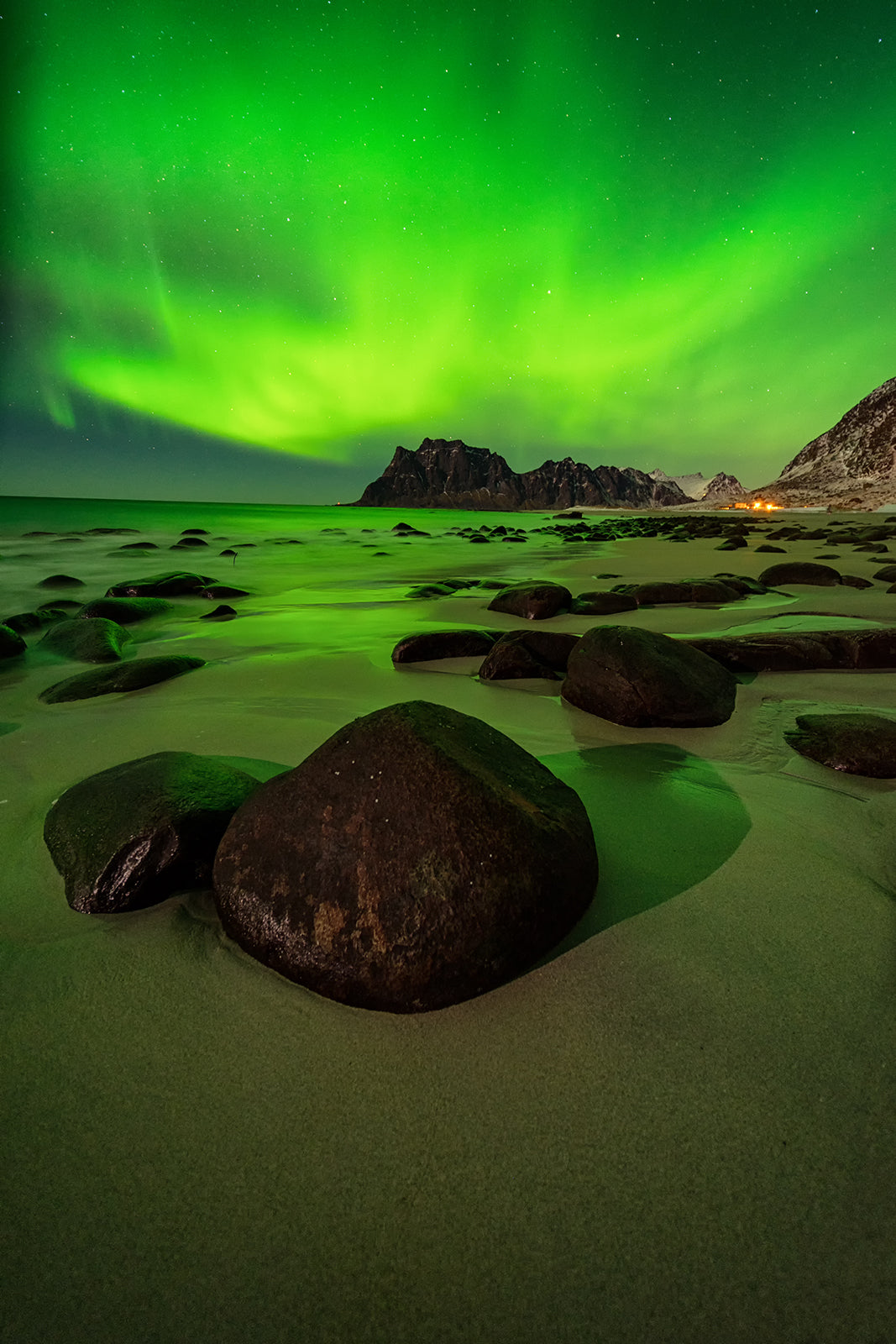 Uttakliev Lofoten northern lights