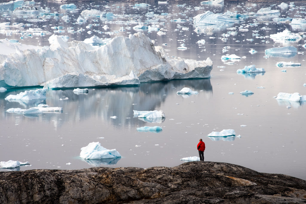 Person in greenland looking at icebergs_photo by lisa germany
