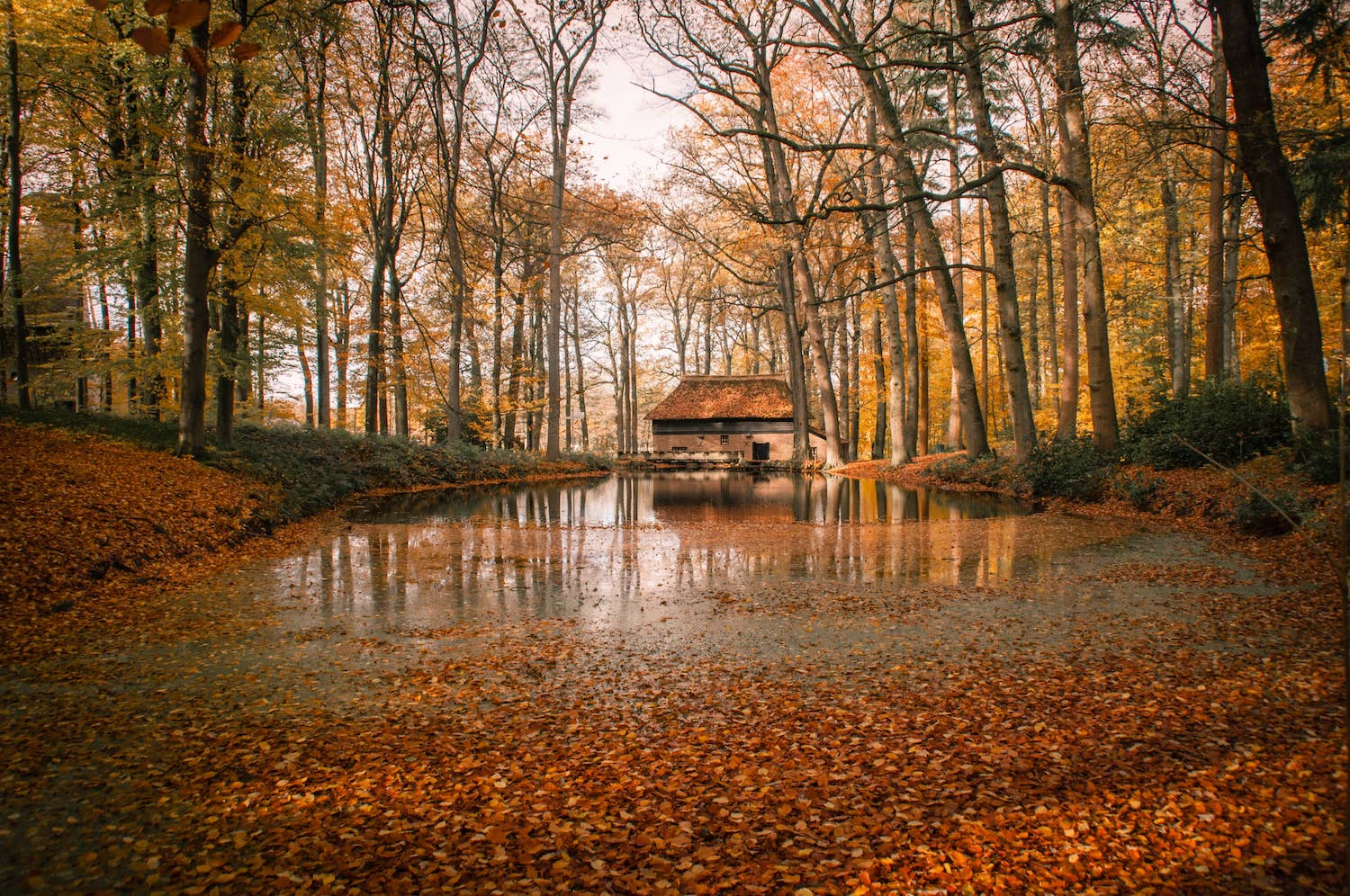 photo of cabin reflection during autumn jos-zwaa