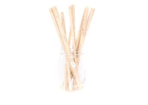 Bamboo Straws | Set of 12