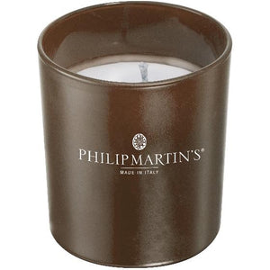 Philip Martin's Tropical Breeze Organic Candle - αTENEα