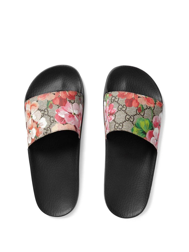 Bloom Slides