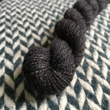Blackbird -- mini-skein -- Broadway silver sparkle sock yarn-- ready to ship