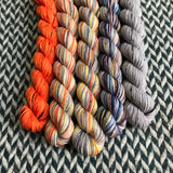 Autumn in New York *5 Mini-Skein Set* -- Times Square sock yarn -- ready to ship