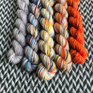 Autumn in New York *5 Mini-Skein Set* -- Greenwich Village DK weight yarn -- ready to ship