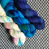 PARROTS ON PARADE *3 Skein Set*-- Harlem sock yarn -- ready to ship
