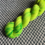 PICKLEBACK -- Kew Gardens DK merino/nylon yarn -- ready to ship