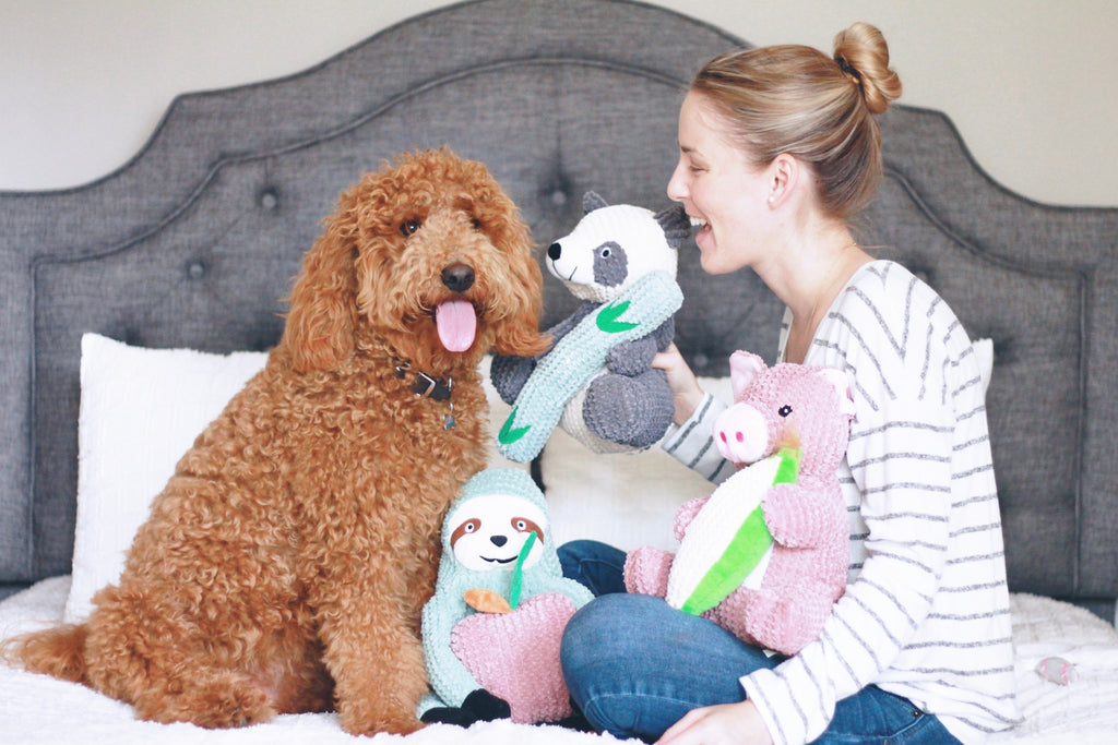 6 Best Dog Toys for Goldendoodles and Labradoodles