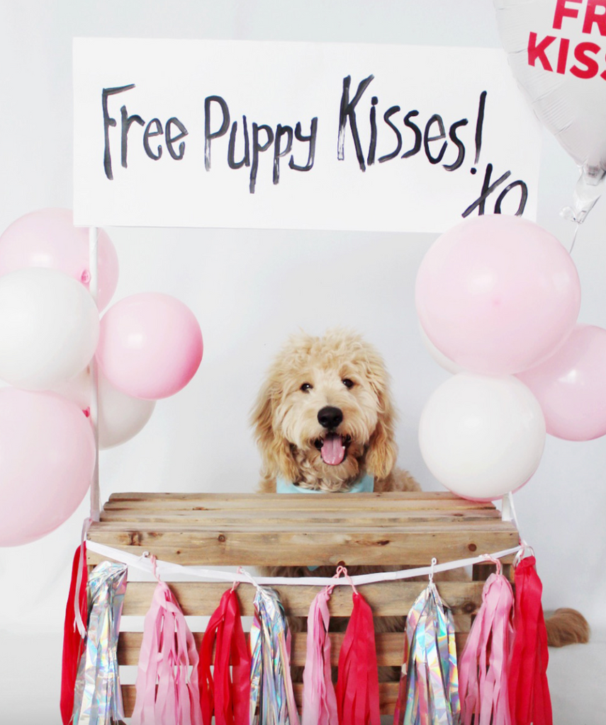 10 Free Valentines Day Cards For Dog Lovers
