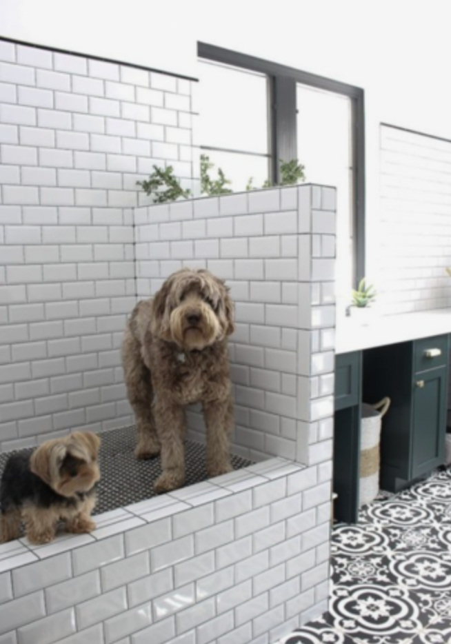 Dog Friendly Home Renovations