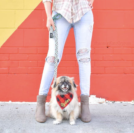 A Dog Friendly Travel Guide To Houston, Texas