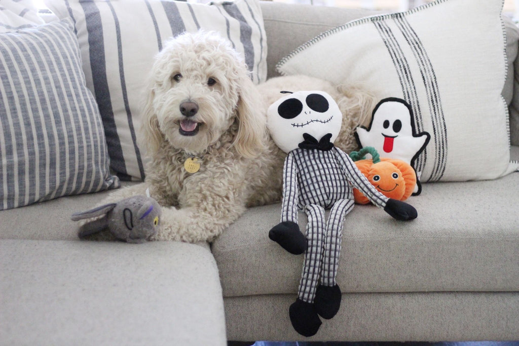 Halloween Dog Toy Collection