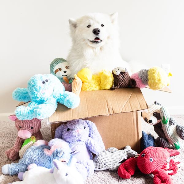 Most Popular Dog Toys