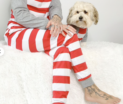 10 Christmas Pajamas Your Dog Needs This Year christmas plusg dog toys patchwork pet dog blog christmas striped dog pajamas