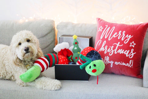 2019 Holiday and Christmas gifs for dogs holiday toy giftbox patchwork pet plush dog toys