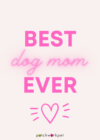 best dog mom ever valentines day card