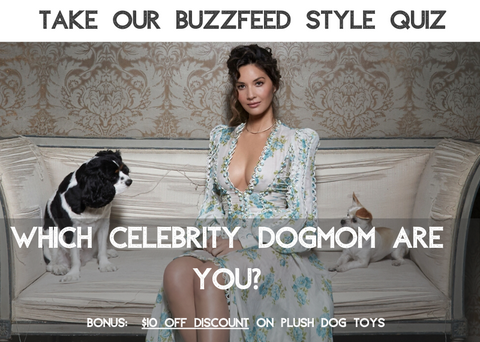 celebrity dog mom quiz
