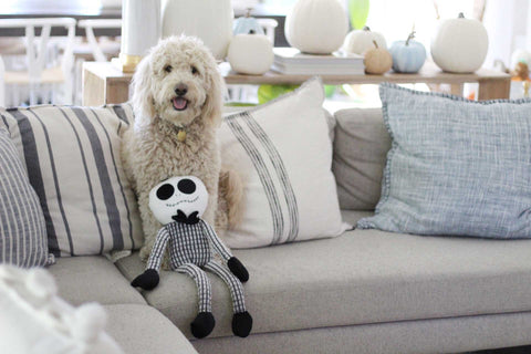 Patchwork Pet Halloween and Holiday Plush dog toys Muttley Skeleton