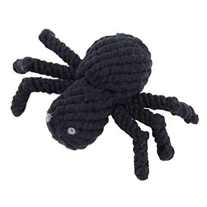 Halloween dog toys jax and bones spider