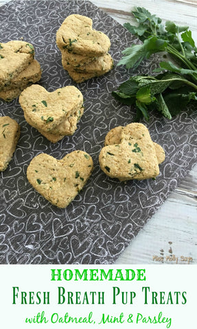 Summer frozen DIY dog treat recipes mint dog treats