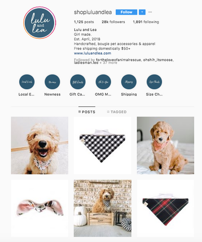 Lua and Lea Best women owned small business dog online boutiques patchwork pet dog blog