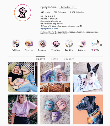 Ripley and RueBest women owned small business dog online boutiques patchwork pet dog blog