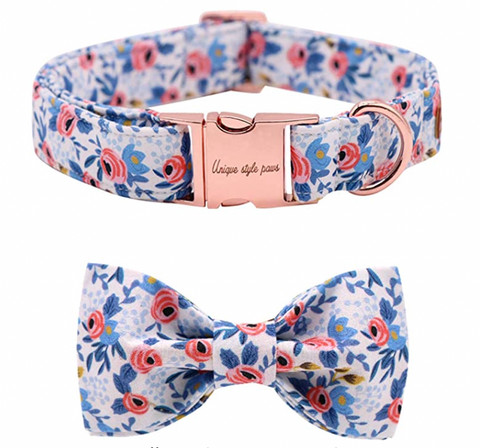 dog collar and bowtie set