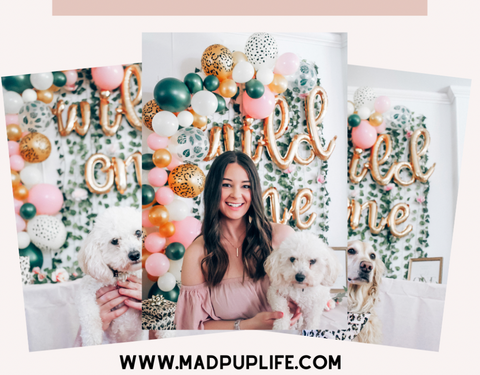 how to plan a dog birthday party