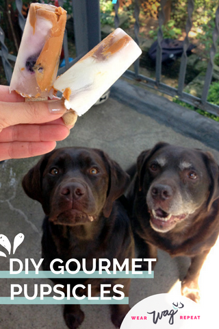 Frozen DIY dog treats for summer