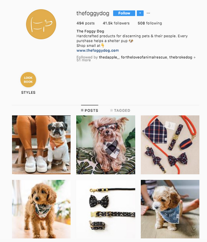 The Foggy Dog Best women owned small business dog online boutiques patchwork pet dog blog