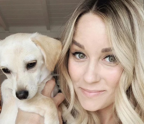 their dogs lauren conrad and puppy  patchwork pet dog blog
