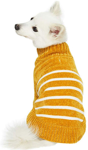 Fall gift guide for dog lovers mustard dog sweater