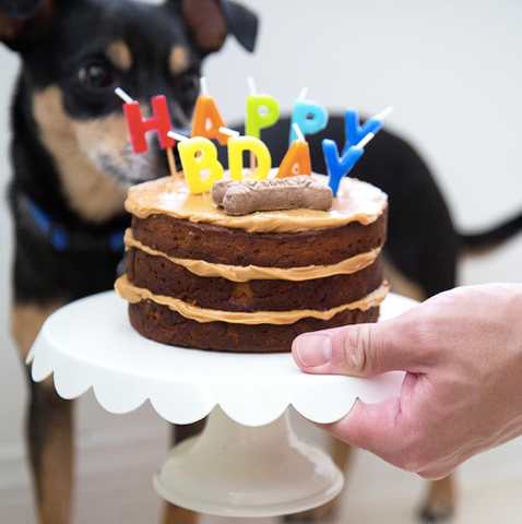 peanut butter aple dog birthday cake