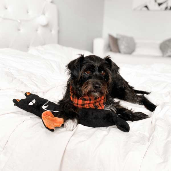 Halloween trendy plush dog toys Bat stick patchwork pet plush dog toys  and black dog
